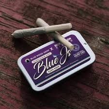 Kush Hemp Strain Connoisseur Hemp Blue Pre-Rolls By Blue Ridge Hemp - 5 pack